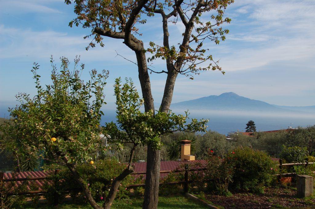 Uitzicht Vesuvius | Amalfikust