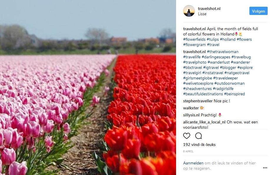 Nederland | Lisse